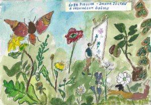 Afra Piroska-Danka Zoltán A vadvirágok öröme 3