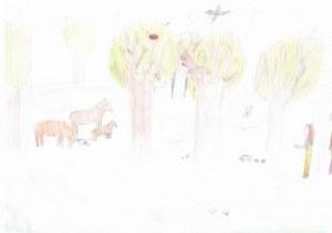 Jakab Eszter Zsófia_Kirándulás az erdőben_Gál Rebeka_320x226