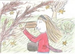 Várady Lilla  A kis gesztenye története. Illusztrálta Berecz Vivien 4.o. Balatonkenese Pilinszky Iskola_320x232